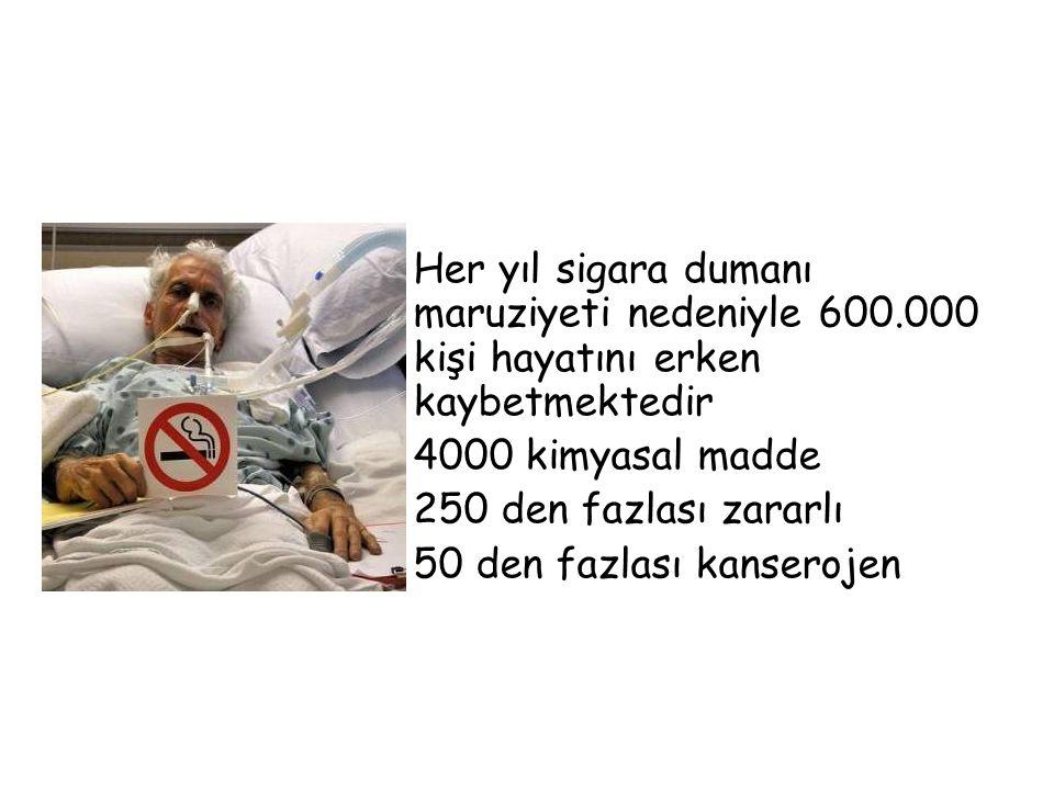 Her yıl sigara dumanı maruziyeti nedeniyle 600.000 kişi hayatını erken kaybetmektedir 4000 kimyasal madde 250 den fazlası zararlı 50 den fazlası kanse