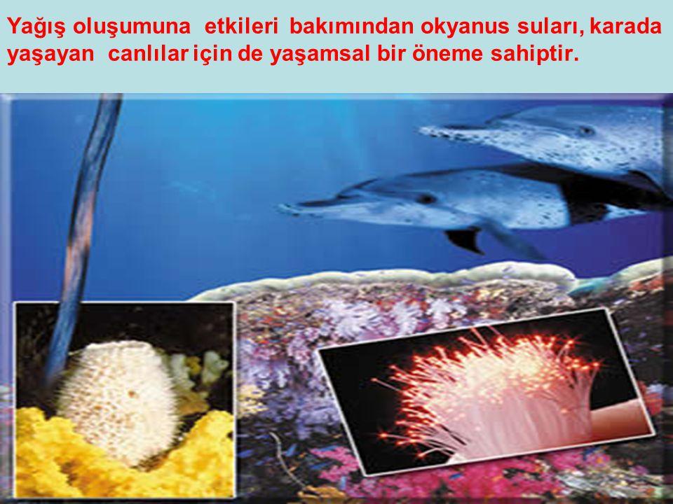 Yağış oluşumuna etkileri bakımından okyanus suları, karada yaşayan canlılar için de yaşamsal bir öneme sahiptir.