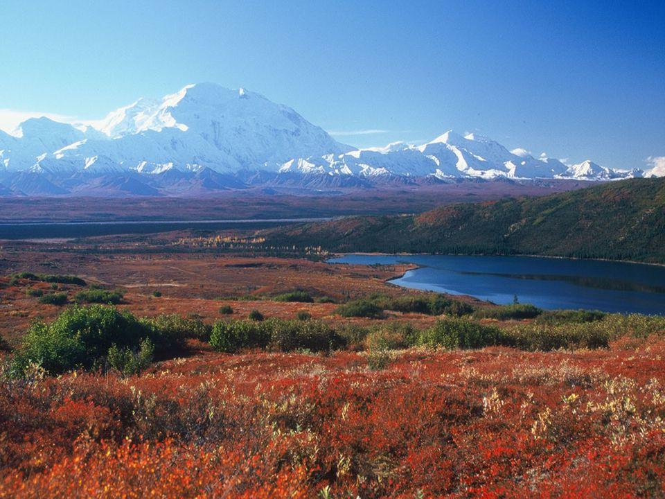 Dünyanın en büyük tuzlu su gölüdür.tuzlu su gölüdür Yüzölçümü :371.000 km² dir.