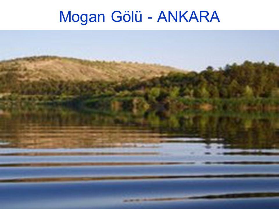 Mogan Gölü - ANKARA