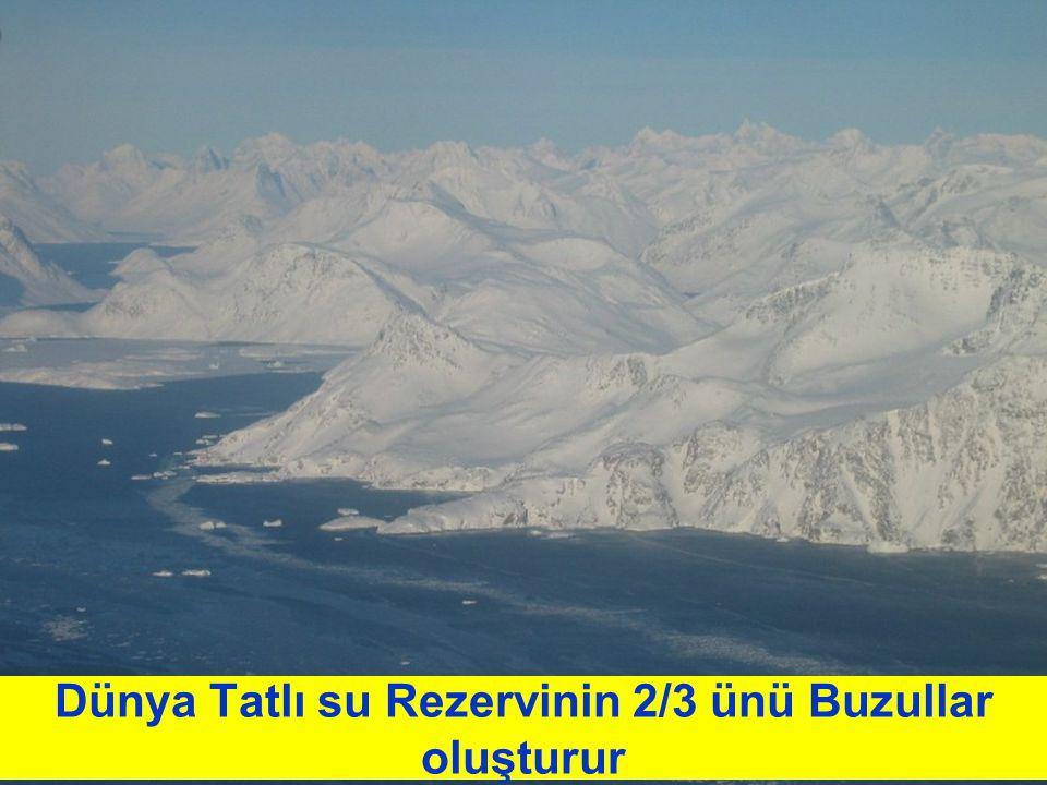 Dünya Tatlı su Rezervinin 2/3 ünü Buzullar oluşturur