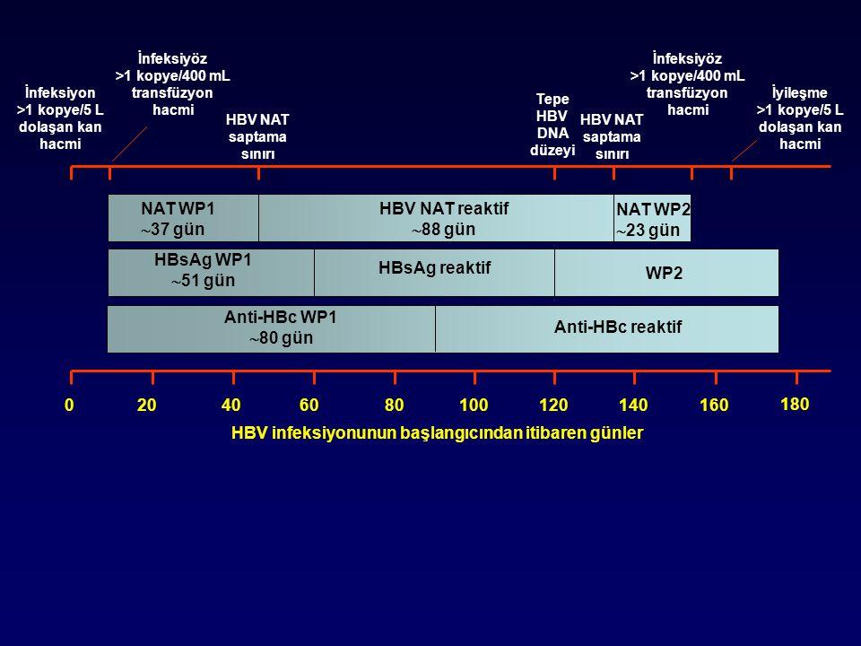 NAT WP1  37 gün HBsAg WP1  51 gün Anti-HBc WP1  80 gün Anti-HBc reaktif WP2 NAT WP2  23 gün HBV NAT reaktif  88 gün HBsAg reaktif İnfeksiyon >1 kopye/5 L dolaşan kan hacmi İnfeksiyöz >1 kopye/400 mL transfüzyon hacmi HBV NAT saptama sınırı İnfeksiyöz >1 kopye/400 mL transfüzyon hacmi İyileşme >1 kopye/5 L dolaşan kan hacmi Tepe HBV DNA düzeyi 180 16014012010080400 HBV infeksiyonunun başlangıcından itibaren günler 6020