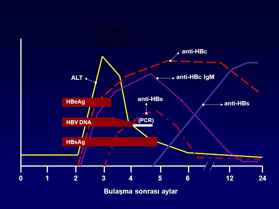 HBV DNA (PCR) HBeAg HBsAg ALT anti-HBc anti-HBs anti-HBc IgM anti-HBe Sarılık Semptomlar Bulaşma sonrası aylar 01234561224