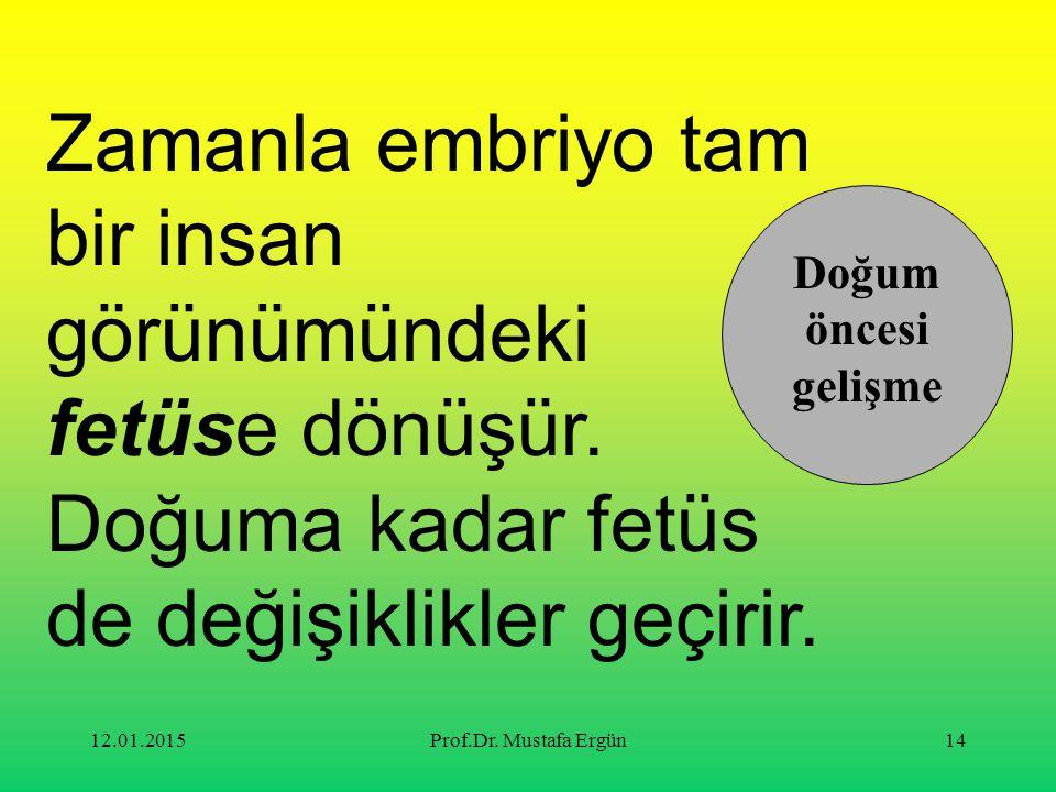12.01.2015Prof.Dr. Mustafa Ergün14 Zamanla embriyo tam bir insan görünümündeki fetüse dönüşür. Doğuma kadar fetüs de değişiklikler geçirir. Doğum önce