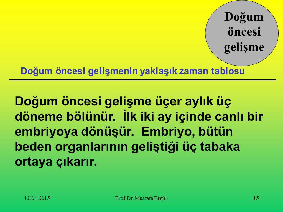12.01.2015Prof.Dr.Mustafa Ergün15 Doğum öncesi gelişme üçer aylık üç döneme bölünür.