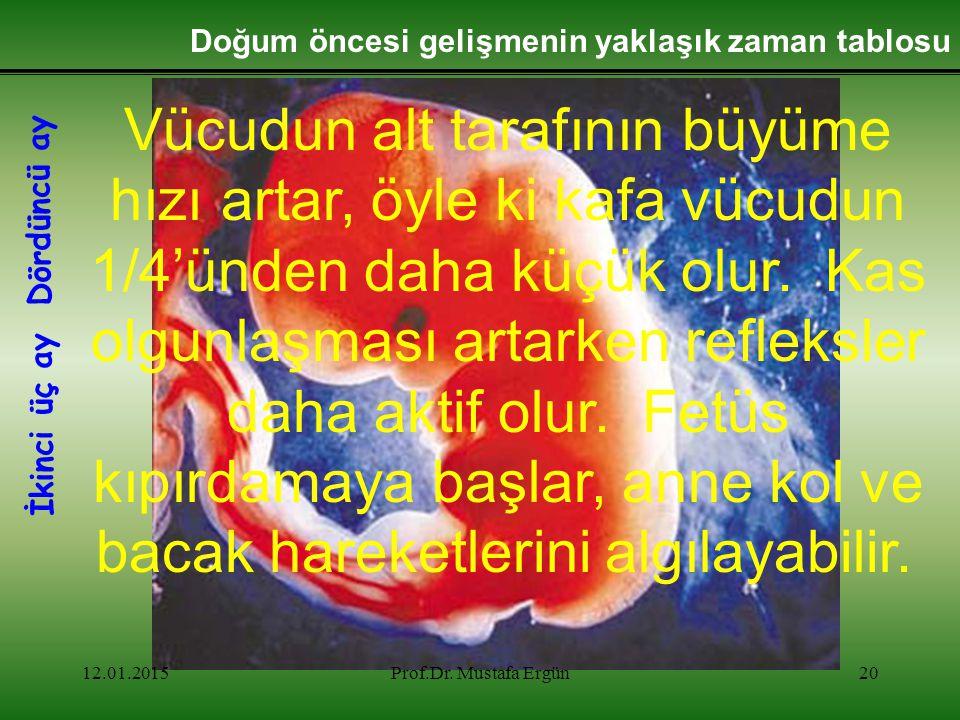 12.01.2015Prof.Dr. Mustafa Ergün20 Doğum öncesi gelişmenin yaklaşık zaman tablosu Vücudun alt tarafının büyüme hızı artar, öyle ki kafa vücudun 1/4'ün