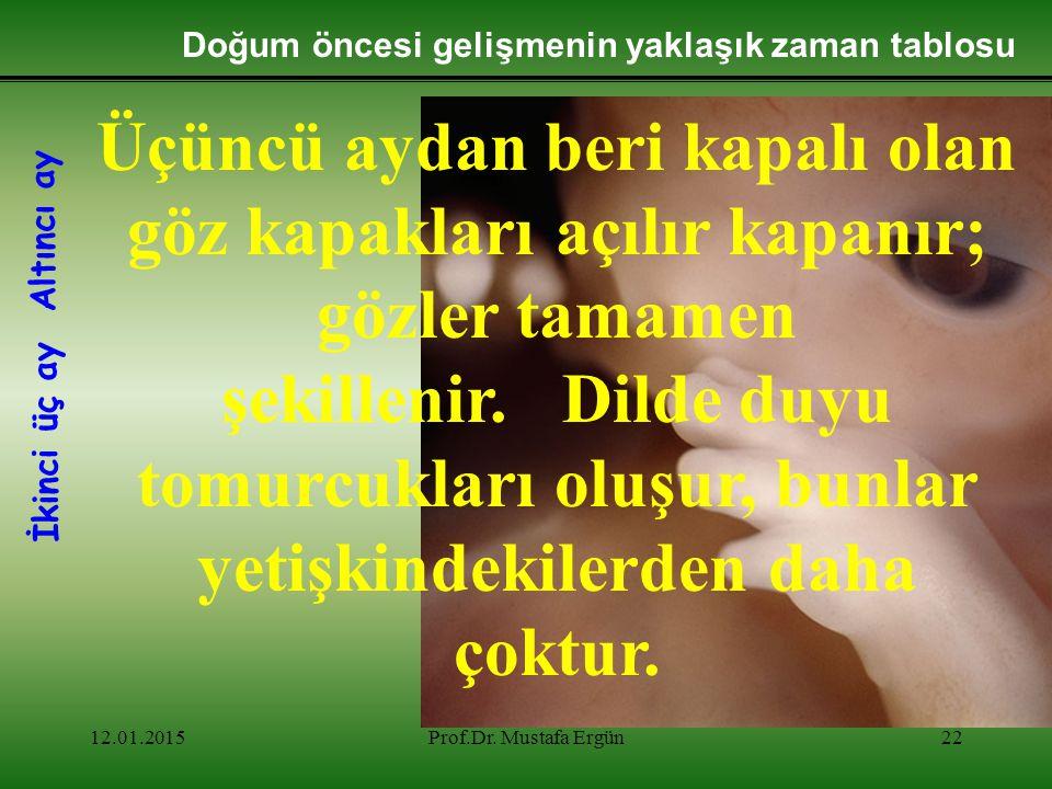 12.01.2015Prof.Dr. Mustafa Ergün22 Üçüncü aydan beri kapalı olan göz kapakları açılır kapanır; gözler tamamen şekillenir. Dilde duyu tomurcukları oluş