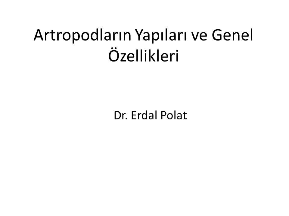 Artropodların Yapıları ve Genel Özellikleri Dr. Erdal Polat