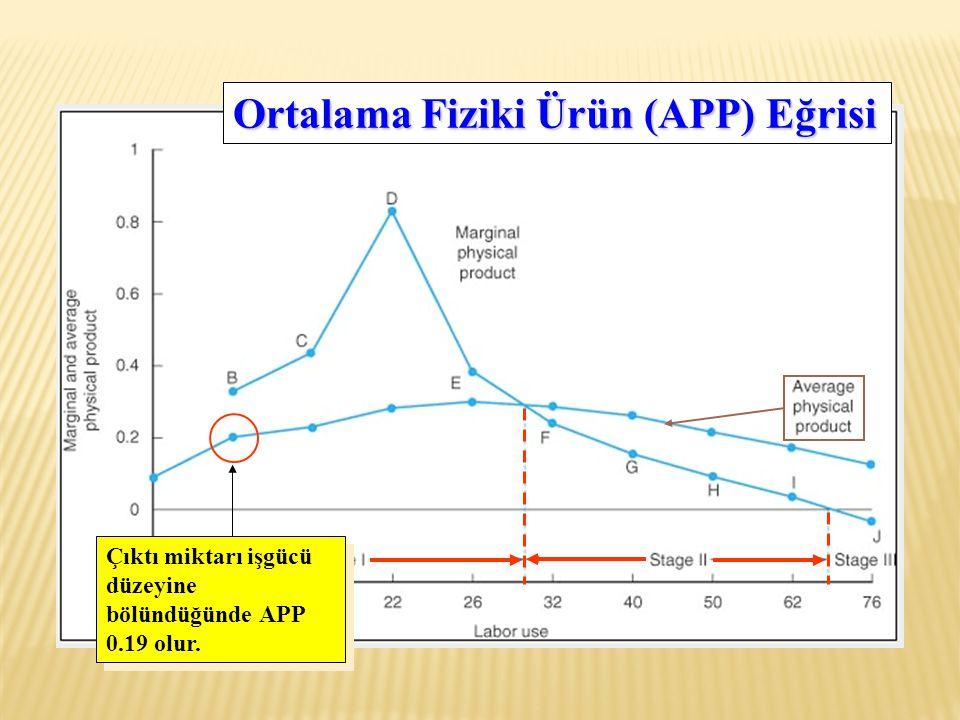 Çıktı miktarı işgücü düzeyine bölündüğünde APP 0.19 olur. Ortalama Fiziki Ürün (APP) Eğrisi
