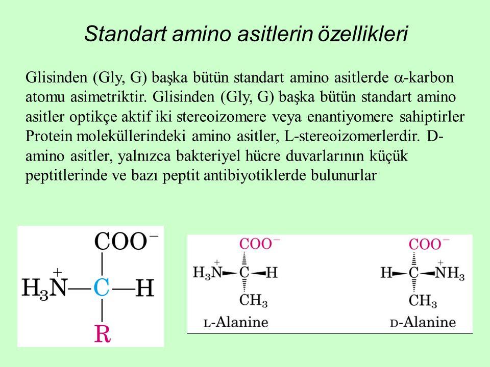 Standart amino asitlerin özellikleri Glisinden (Gly, G) başka bütün standart amino asitlerde  -karbon atomu asimetriktir. Glisinden (Gly, G) başka bü