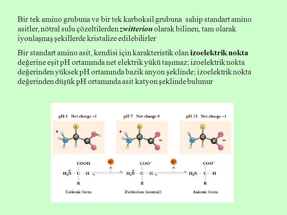 Bir tek amino grubuna ve bir tek karboksil grubuna sahip standart amino asitler, nötral sulu çözeltilerden zwitterion olarak bilinen, tam olarak iyonlaşmış şekillerde kristalize edilebilirler Bir standart amino asit, kendisi için karakteristik olan izoelektrik nokta değerine eşit pH ortamında net elektrik yükü taşımaz; izoelektrik nokta değerinden yüksek pH ortamında bazik anyon şeklinde; izoelektrik nokta değerinden düşük pH ortamında asit katyon şeklinde bulunur