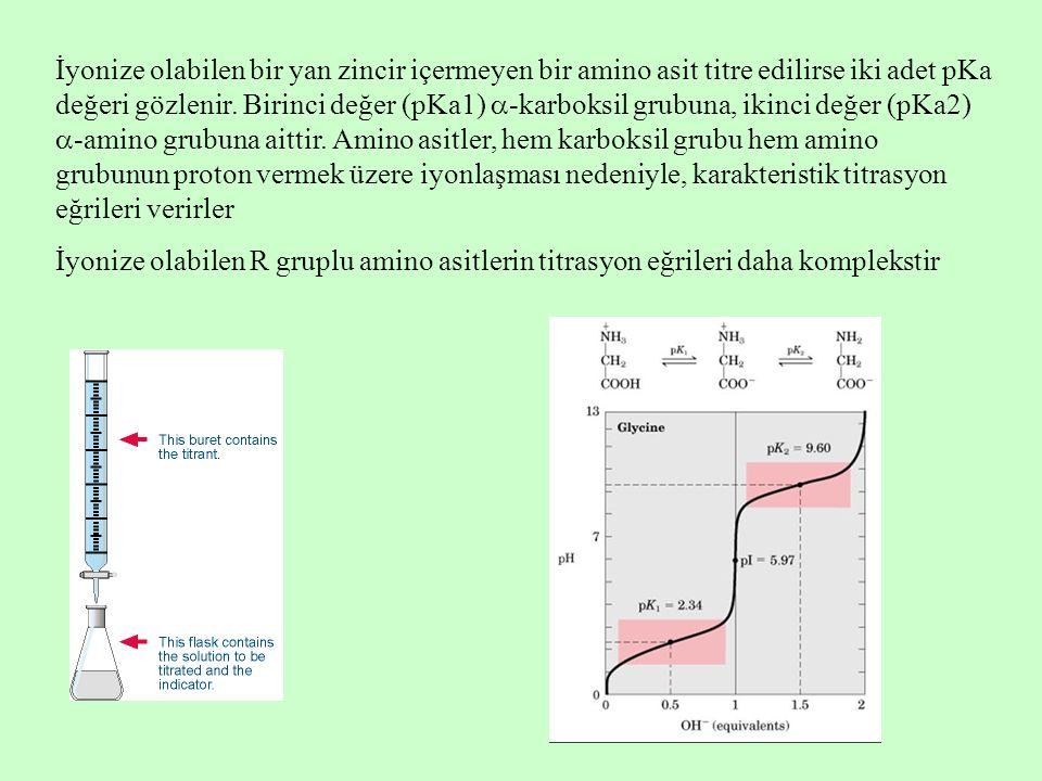 İyonize olabilen bir yan zincir içermeyen bir amino asit titre edilirse iki adet pKa değeri gözlenir.