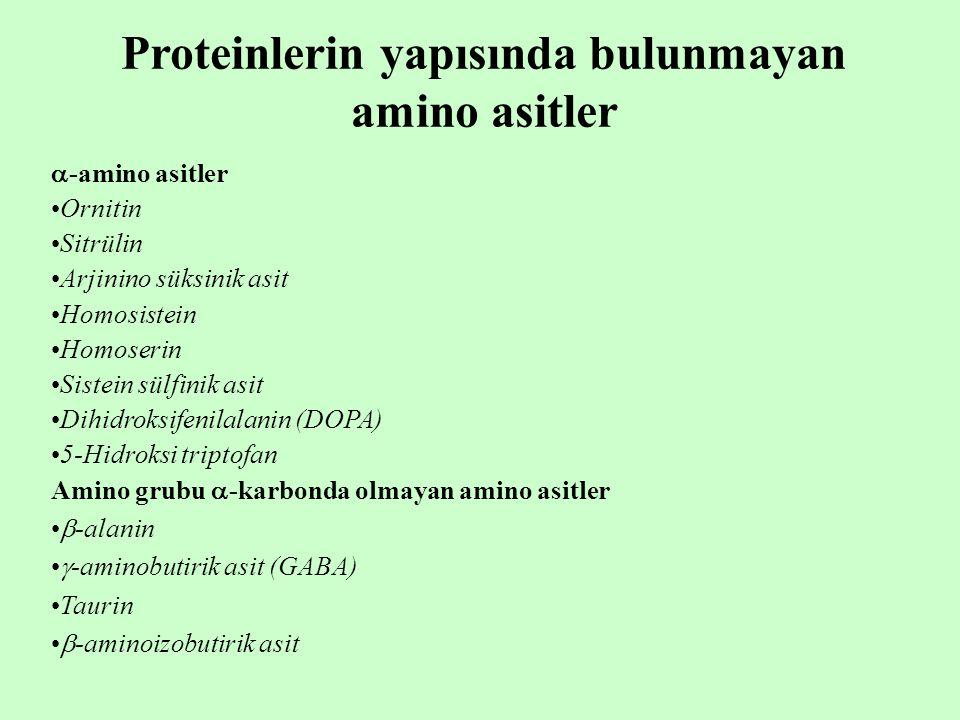  -amino asitler Ornitin Sitrülin Arjinino süksinik asit Homosistein Homoserin Sistein sülfinik asit Dihidroksifenilalanin (DOPA) 5-Hidroksi triptofan