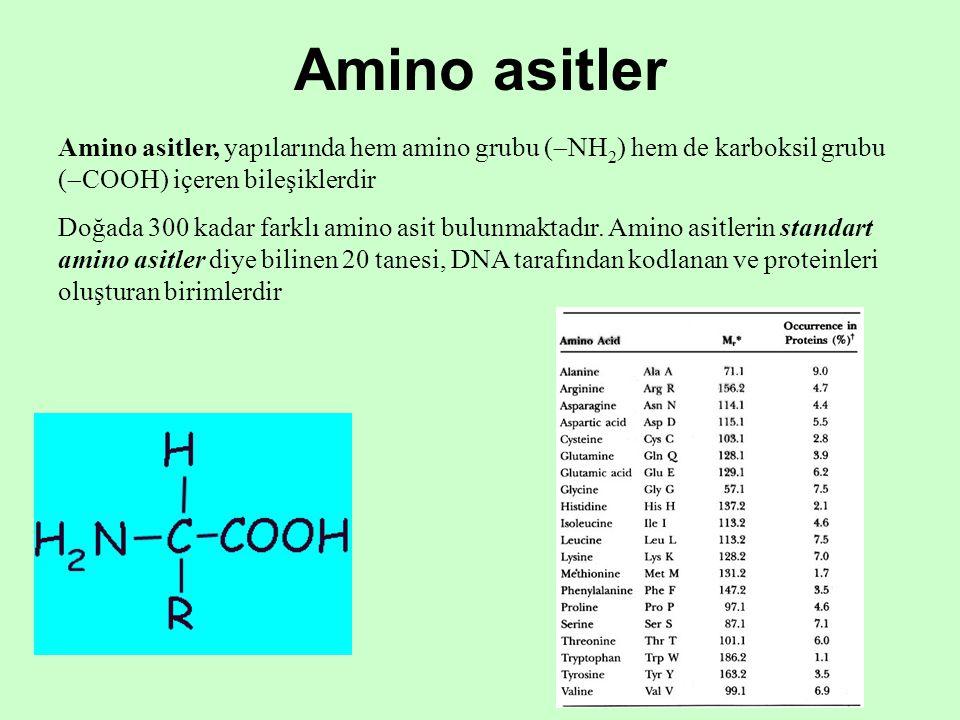 Amino asitler Amino asitler, yapılarında hem amino grubu (  NH 2 ) hem de karboksil grubu (  COOH) içeren bileşiklerdir Doğada 300 kadar farklı amino asit bulunmaktadır.