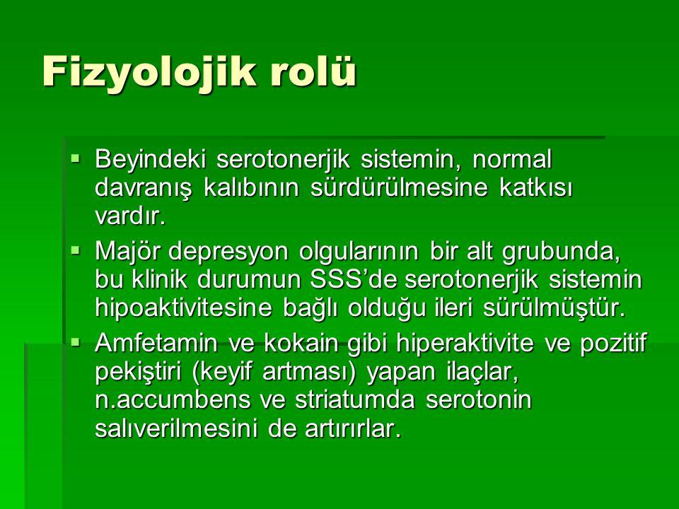 Fizyolojik rolü  Beyindeki serotonerjik sistemin, normal davranış kalıbının sürdürülmesine katkısı vardır.