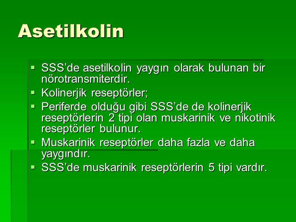 Asetilkolin  SSS'de asetilkolin yaygın olarak bulunan bir nörotransmiterdir.