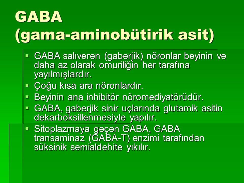 GABA (gama-aminobütirik asit)  GABA salıveren (gaberjik) nöronlar beyinin ve daha az olarak omuriliğin her tarafına yayılmışlardır.