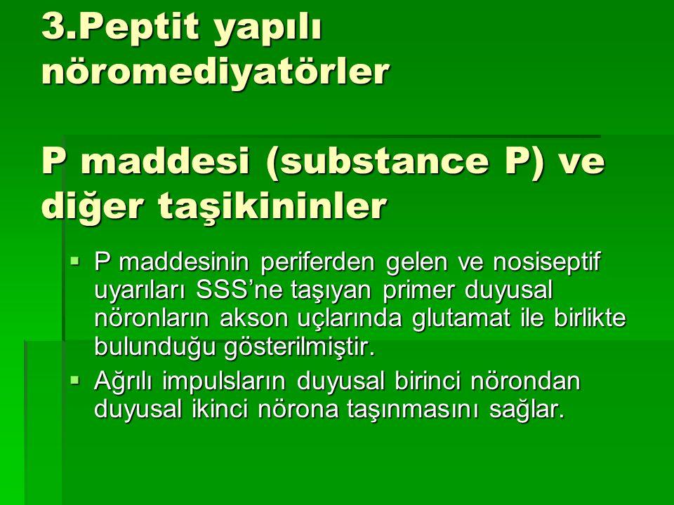 3.Peptit yapılı nöromediyatörler P maddesi (substance P) ve diğer taşikininler  P maddesinin periferden gelen ve nosiseptif uyarıları SSS'ne taşıyan primer duyusal nöronların akson uçlarında glutamat ile birlikte bulunduğu gösterilmiştir.