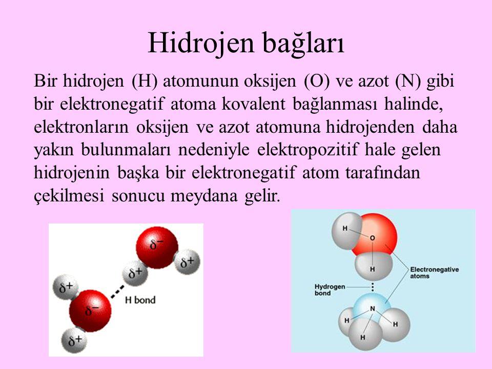 33 Hidrojen bağları Bir hidrojen (H) atomunun oksijen (O) ve azot (N) gibi bir elektronegatif atoma kovalent bağlanması halinde, elektronların oksijen