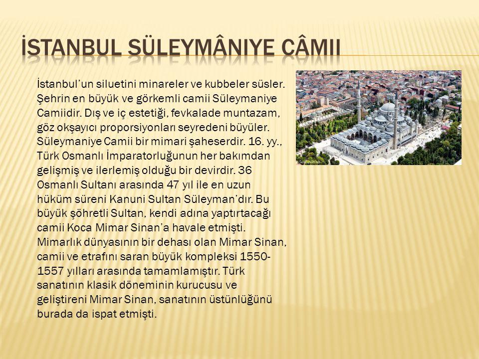 İstanbul'un siluetini minareler ve kubbeler süsler. Şehrin en büyük ve görkemli camii Süleymaniye Camiidir. Dış ve iç estetiği, fevkalade muntazam, gö