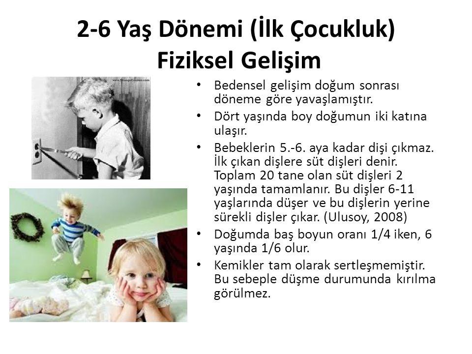 2-6 Yaş Dönemi (İlk Çocukluk) Fiziksel Gelişim Bedensel gelişim doğum sonrası döneme göre yavaşlamıştır. Dört yaşında boy doğumun iki katına ulaşır. B
