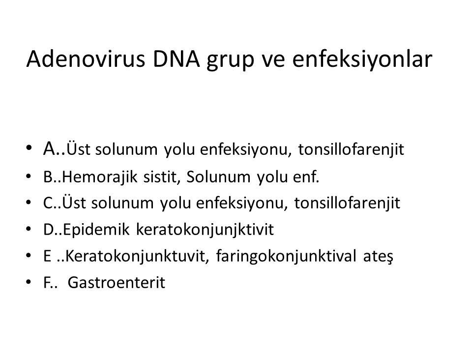 Adenovirus DNA grup ve enfeksiyonlar A.. Üst solunum yolu enfeksiyonu, tonsillofarenjit B..Hemorajik sistit, Solunum yolu enf. C..Üst solunum yolu enf