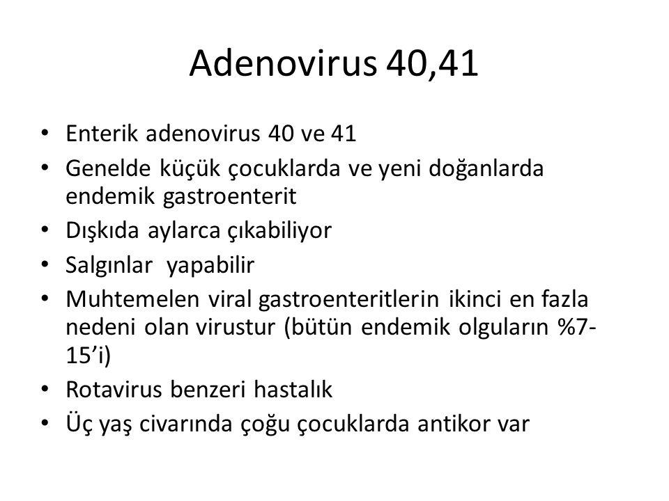 Adenovirus 40,41 Enterik adenovirus 40 ve 41 Genelde küçük çocuklarda ve yeni doğanlarda endemik gastroenterit Dışkıda aylarca çıkabiliyor Salgınlar y
