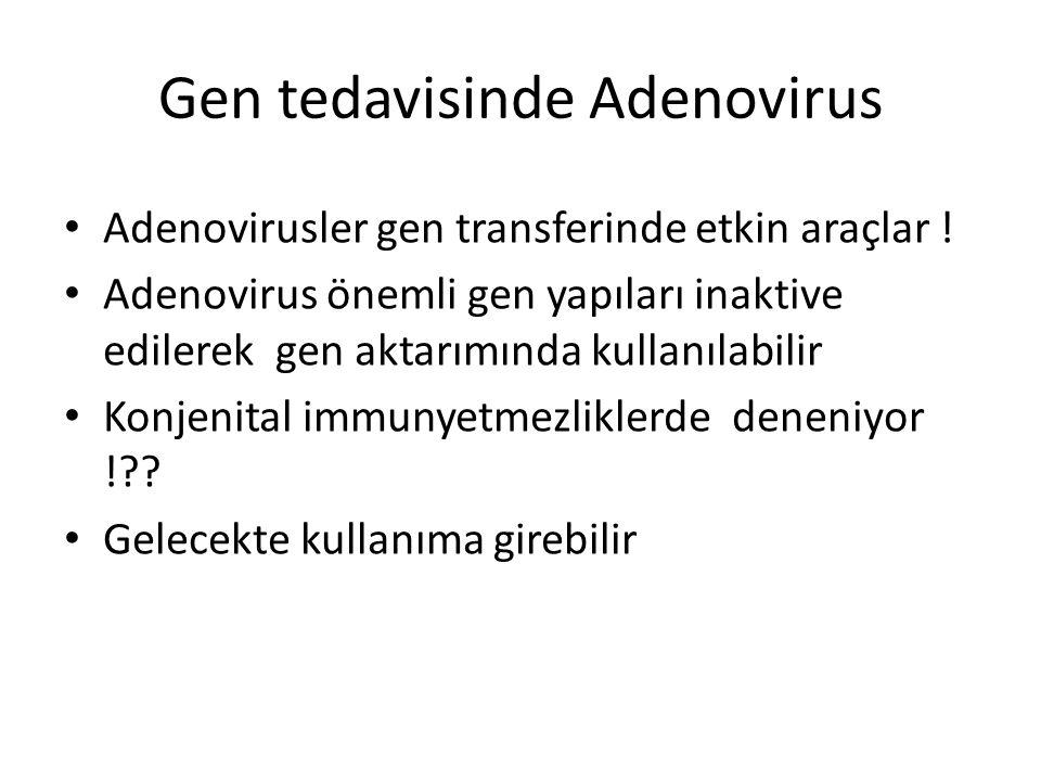 Gen tedavisinde Adenovirus Adenovirusler gen transferinde etkin araçlar ! Adenovirus önemli gen yapıları inaktive edilerek gen aktarımında kullanılabi