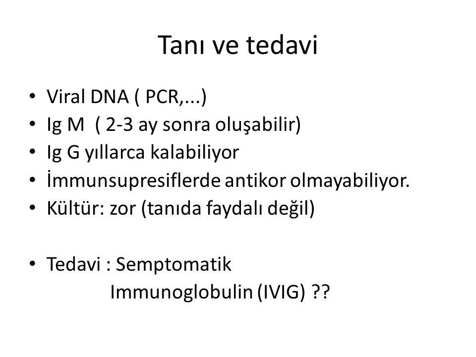 Tanı ve tedavi Viral DNA ( PCR,...) Ig M ( 2-3 ay sonra oluşabilir) Ig G yıllarca kalabiliyor İmmunsupresiflerde antikor olmayabiliyor. Kültür: zor (t
