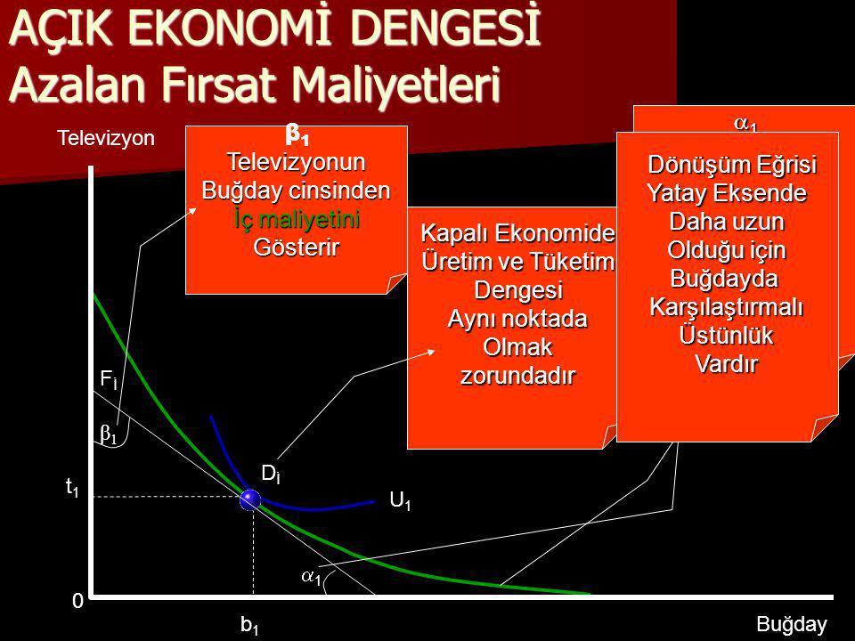 ©Prof.Dr.Kenan ÇELİK-2005