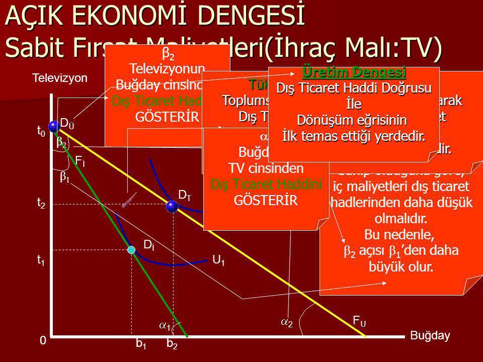 22 β2β2   2 Buğdayın TV cinsinden Dış Ticaret Haddini GÖSTERİR 11 b2b2 β1β1 DİDİ AÇIK EKONOMİ DENGESİ Azalan Fırsat Maliyetleri U1U1 U2U2 Televizyon Buğday FİFİ F U1 D T1 DÜDÜ b0b0 t0t0 t2t2  β 2 Televizyonun Buğday cinsinden Dış Ticaret Haddini GÖSTERİR Örnek Toplum, Buğdayda Karşılaştırmalı Üstünlüğe Sahiptir.