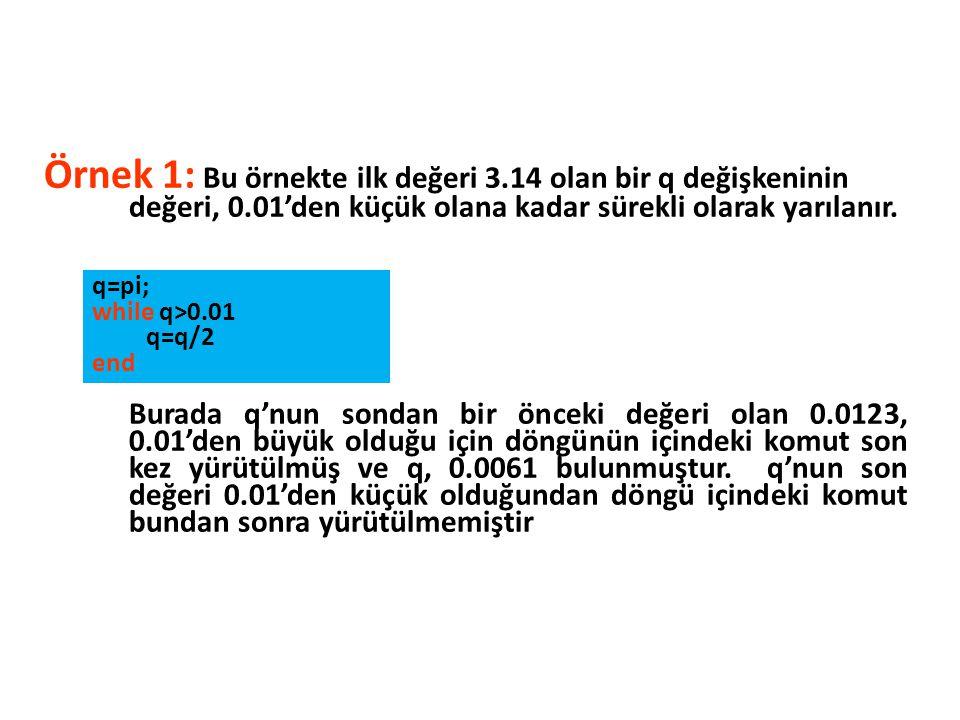 Örnek 1: Bu örnekte ilk değeri 3.14 olan bir q değişkeninin değeri, 0.01'den küçük olana kadar sürekli olarak yarılanır. Burada q'nun sondan bir öncek