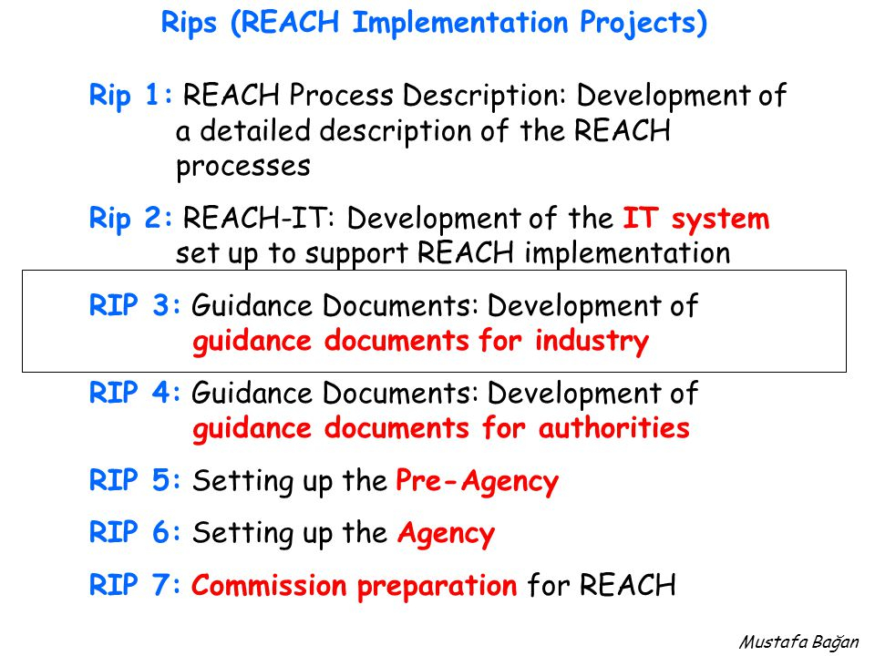 Rip 1: REACH Process Description: Development of a detailed description of the REACH processes Rip 2: REACH-IT: Development of the IT system set up to