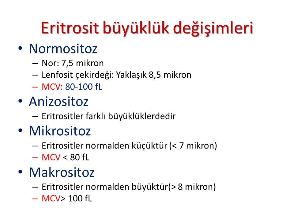 Eritrosit büyüklük değişimleri Normositoz – Nor: 7,5 mikron – Lenfosit çekirdeği: Yaklaşık 8,5 mikron – MCV: 80-100 fL Anizositoz – Eritrositler farklı büyüklüklerdedir Mikrositoz – Eritrositler normalden küçüktür (< 7 mikron) – MCV < 80 fL Makrositoz – Eritrositler normalden büyüktür(> 8 mikron) – MCV> 100 fL