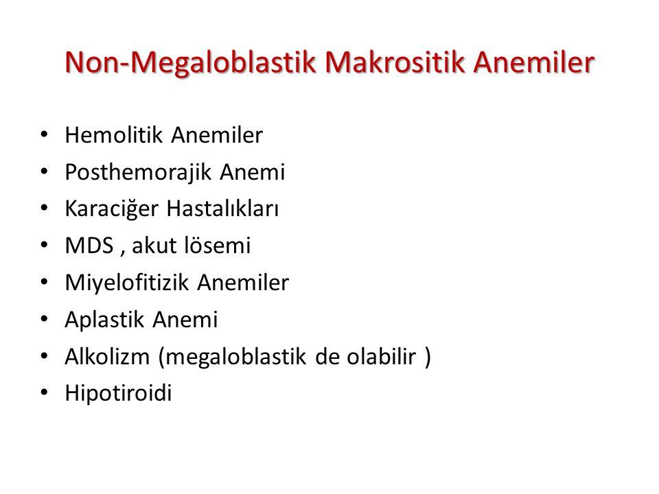 Non-Megaloblastik Makrositik Anemiler Hemolitik Anemiler Posthemorajik Anemi Karaciğer Hastalıkları MDS, akut lösemi Miyelofitizik Anemiler Aplastik Anemi Alkolizm (megaloblastik de olabilir ) Hipotiroidi