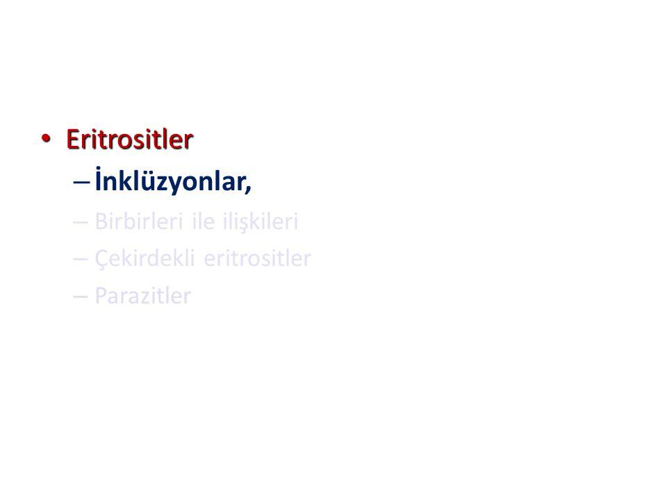 Eritrositler Eritrositler – İnklüzyonlar, – Birbirleri ile ilişkileri – Çekirdekli eritrositler – Parazitler