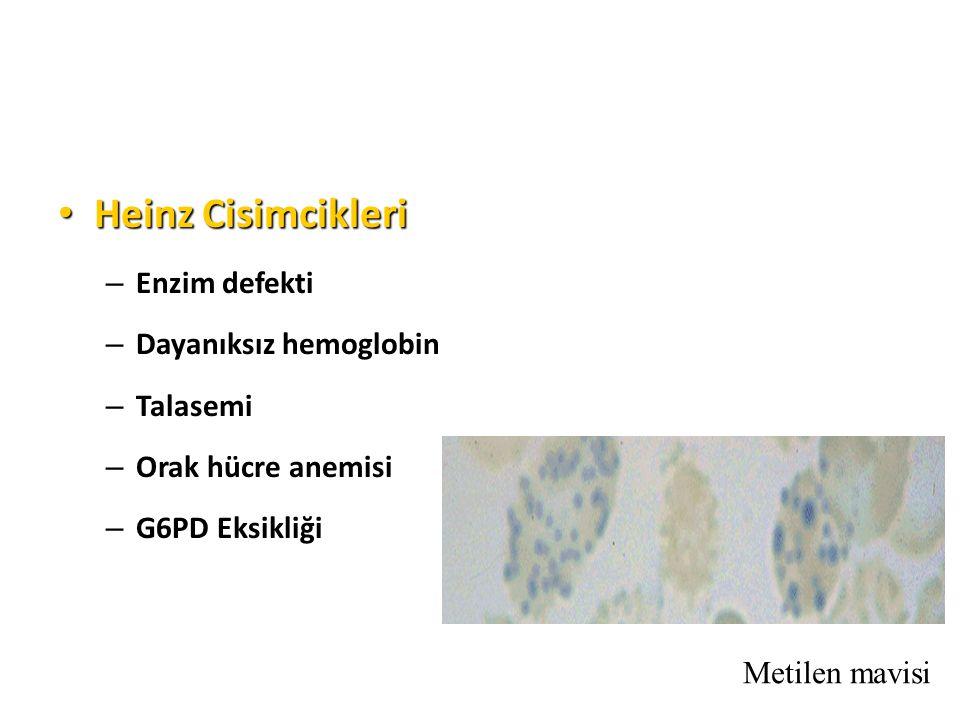 Heinz Cisimcikleri Heinz Cisimcikleri – Enzim defekti – Dayanıksız hemoglobin – Talasemi – Orak hücre anemisi – G6PD Eksikliği Metilen mavisi