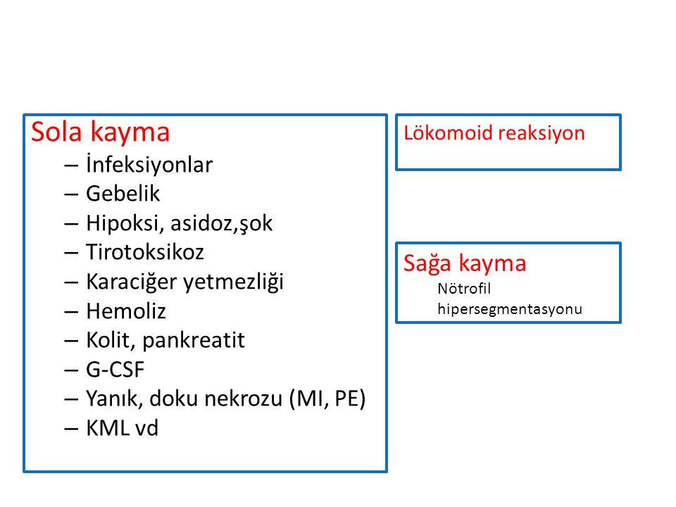 Sola kayma – İnfeksiyonlar – Gebelik – Hipoksi, asidoz,şok – Tirotoksikoz – Karaciğer yetmezliği – Hemoliz – Kolit, pankreatit – G-CSF – Yanık, doku nekrozu (MI, PE) – KML vd Sağa kayma Nötrofil hipersegmentasyonu Lökomoid reaksiyon