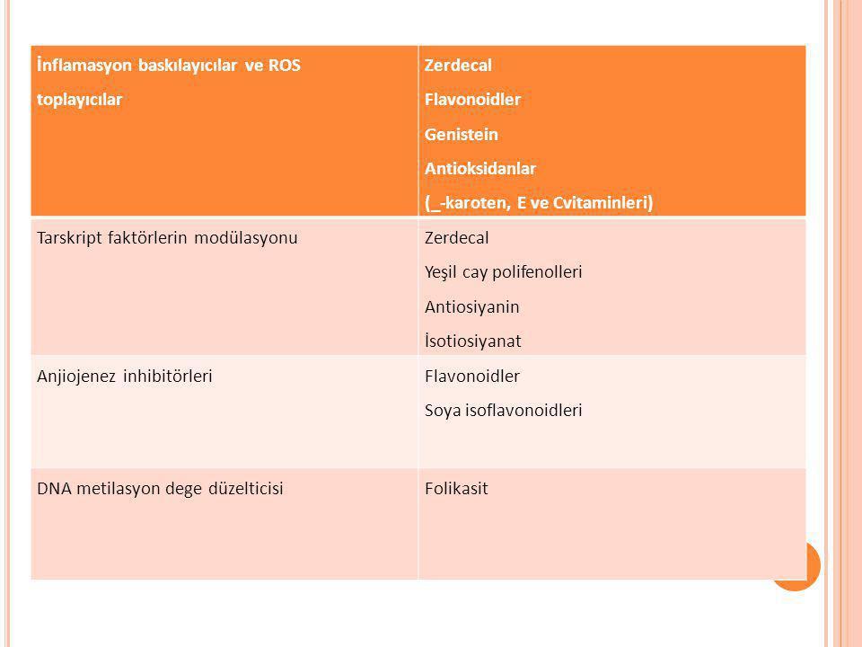 İnflamasyon baskılayıcılar ve ROS toplayıcılar Zerdecal Flavonoidler Genistein Antioksidanlar (_-karoten, E ve Cvitaminleri) Tarskript faktörlerin mod