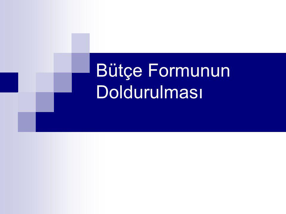 Bütçe Formunun Doldurulması