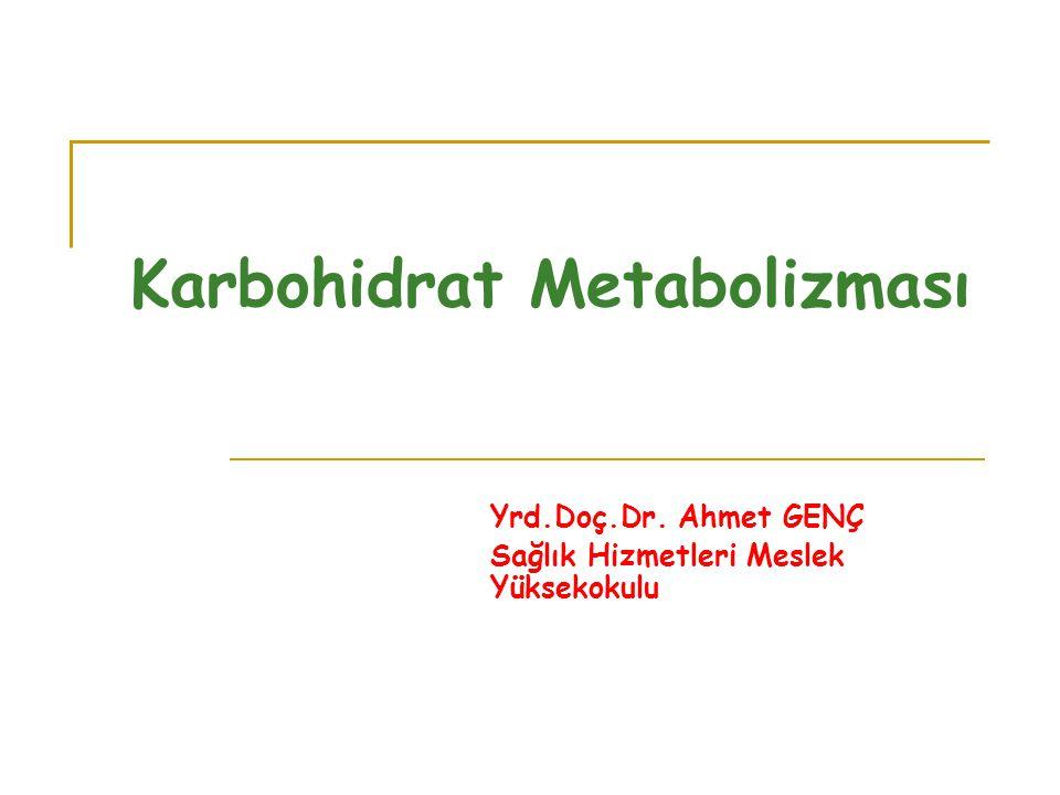 Karbohidrat Metabolizması Yrd.Doç.Dr. Ahmet GENÇ Sağlık Hizmetleri Meslek Yüksekokulu
