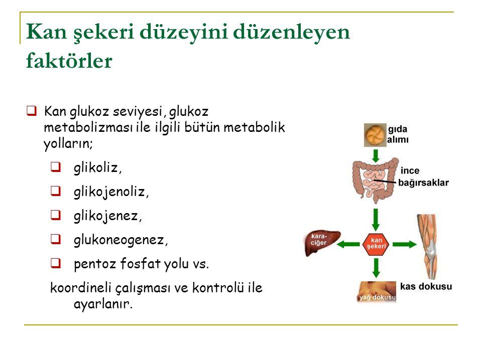 Kan şekeri düzeyini düzenleyen faktörler  Kan glukoz seviyesi, glukoz metabolizması ile ilgili bütün metabolik yolların;  glikoliz,  glikojenoliz,