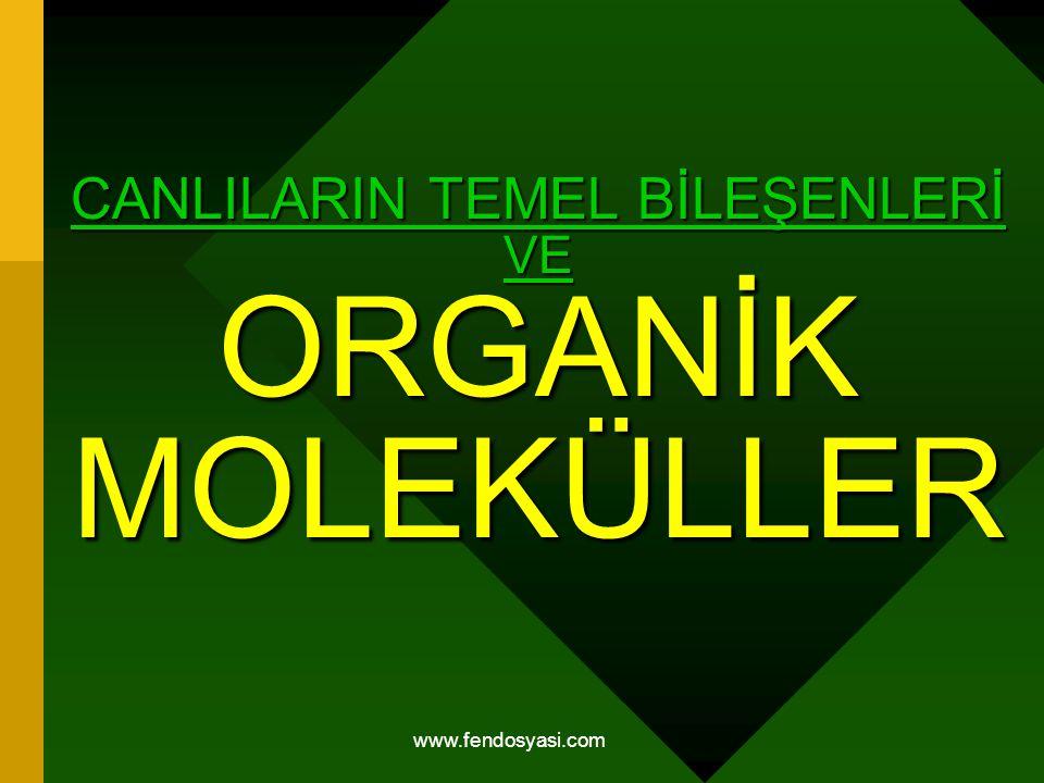 www.fendosyasi.com CANLILARIN TEMEL BİLEŞENLERİ VE ORGANİK MOLEKÜLLER