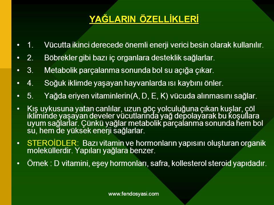www.fendosyasi.com YAĞLARIN ÖZELLİKLERİ 1.Vücutta ikinci derecede önemli enerji verici besin olarak kullanılır. 2.Böbrekler gibi bazı iç organlara des
