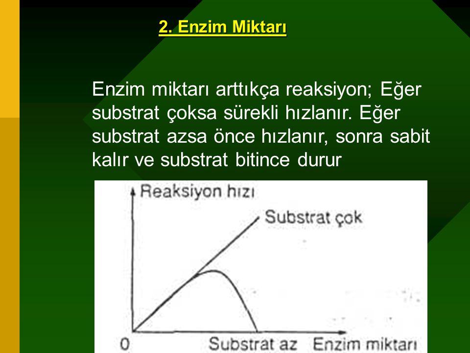 www.fendosyasi.com 2. Enzim Miktarı Enzim miktarı arttıkça reaksiyon; Eğer substrat çoksa sürekli hızlanır. Eğer substrat azsa önce hızlanır, sonra sa