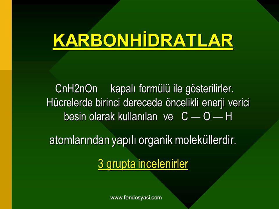 www.fendosyasi.com KARBONHİDRATLAR CnH2nOn kapalı formülü ile gösterilirler. Hücrelerde birinci derecede öncelikli enerji verici besin olarak kullanıl
