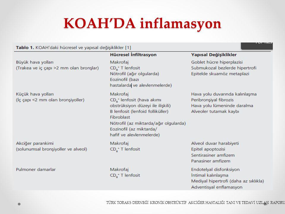 KOAH'DA inflamasyon TÜRK TORAKS DERNEĞİ KRONİK OBSTRÜKTİF AKCİĞER HASTALIĞI TANI VE TEDAVİ UZLAŞI RAPORU