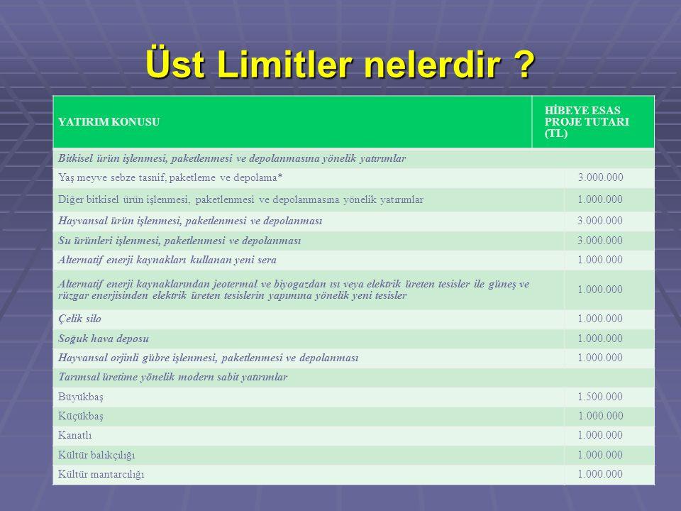 Üst Limitler nelerdir ? YATIRIM KONUSU HİBEYE ESAS PROJE TUTARI (TL) Bitkisel ürün işlenmesi, paketlenmesi ve depolanmasına yönelik yatırımlar Yaş mey