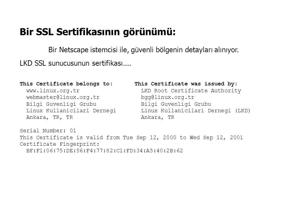 Bir SSL Sertifikasının görünümü: Bir Netscape istemcisi ile, güvenli bölgenin detayları alınıyor. LKD SSL sunucusunun sertifikası.... This Certificate