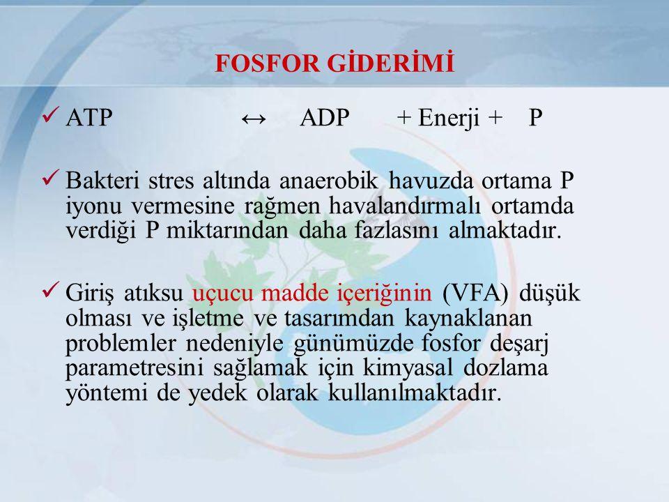 FOSFOR GİDERİMİ ATP ↔ ADP + Enerji + P Bakteri stres altında anaerobik havuzda ortama P iyonu vermesine rağmen havalandırmalı ortamda verdiği P miktar